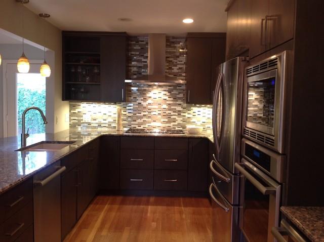 Sophisticated Kitchen Remodel Modern Kitchen Austin By Urban Kitchens And Baths Inc