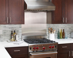 Stainless Steel Range contemporary kitchen