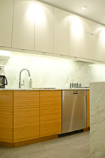 Stanley Avenue Hamilton Contemporary Kitchen Other Metro By Kona Designworks