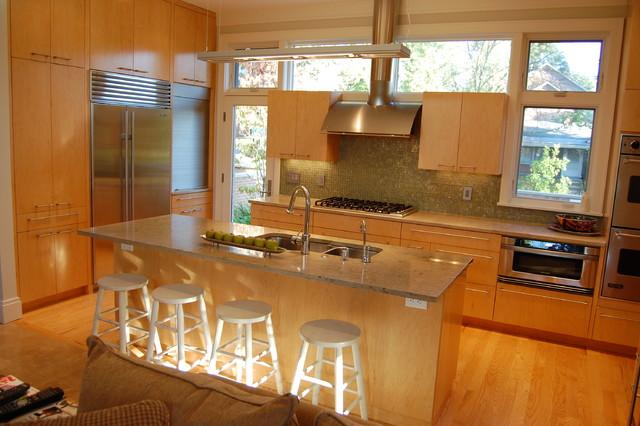 Steel contemporary-kitchen