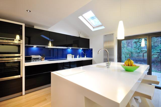 Steve Dempsey contemporary-kitchen