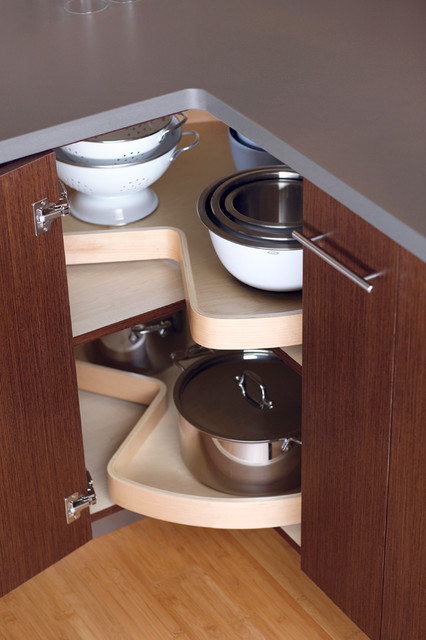 Storage Solutions contemporary-kitchen