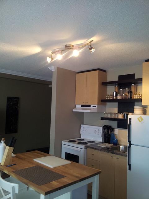 Studio Apartment Traditional Kitchen Other Metro