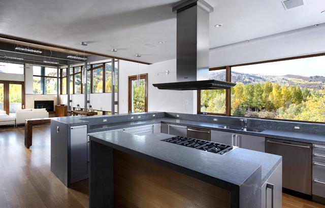 Gentil Minimalist Open Concept Kitchen Photo In Denver With Stainless Steel  Appliances