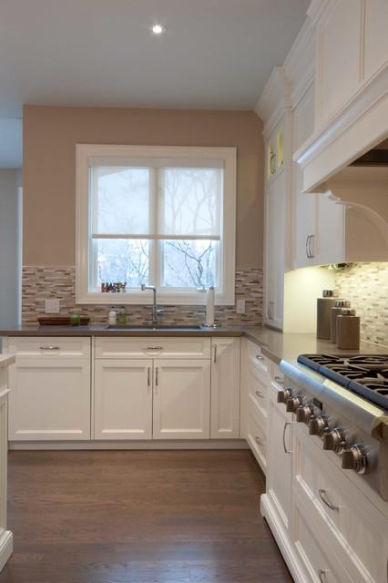 Toronto renovation contemporary-kitchen
