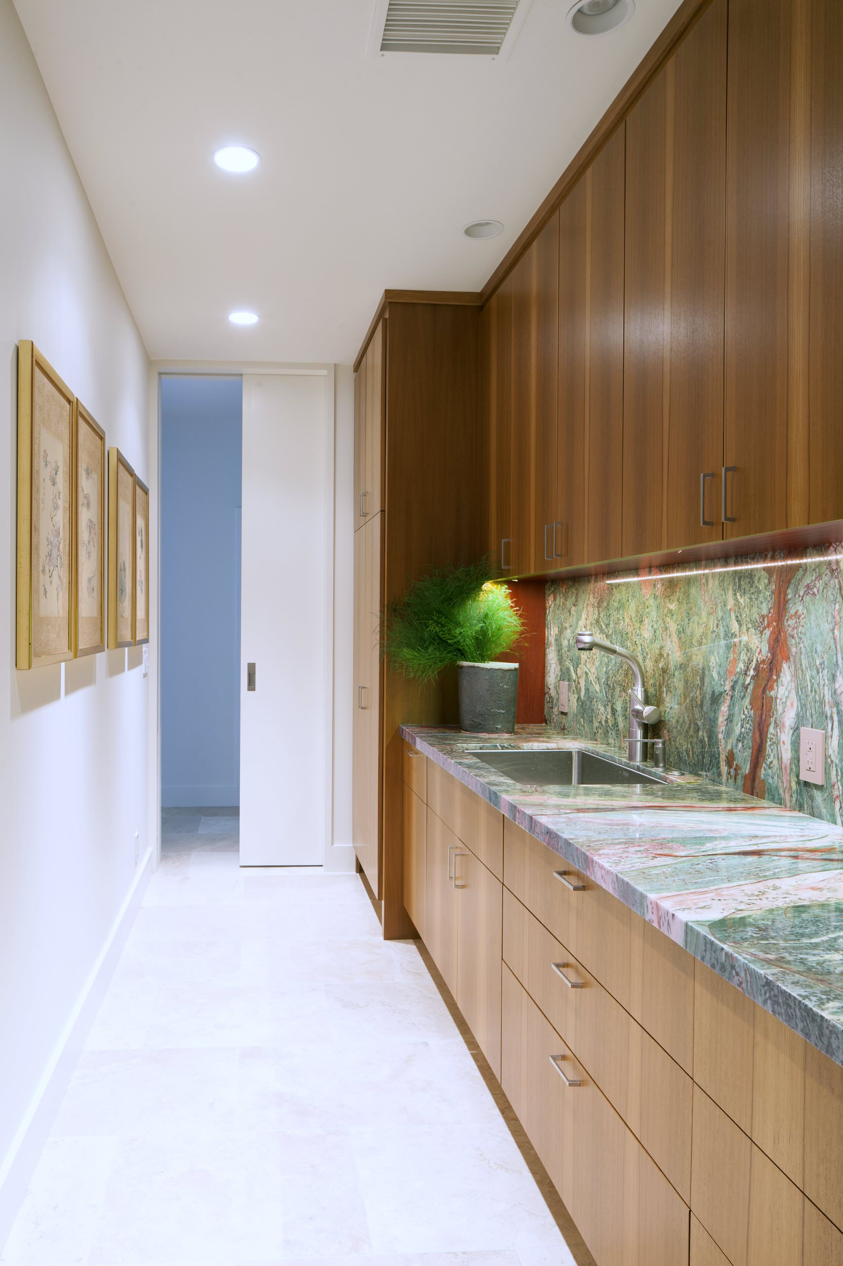 75 Beautiful Contemporary Kitchen Pantry Pictures Ideas