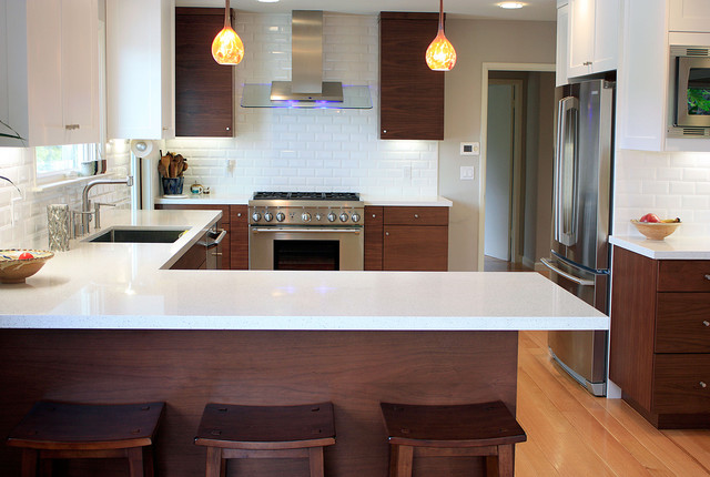 Super Clean Contemporary contemporary kitchen
