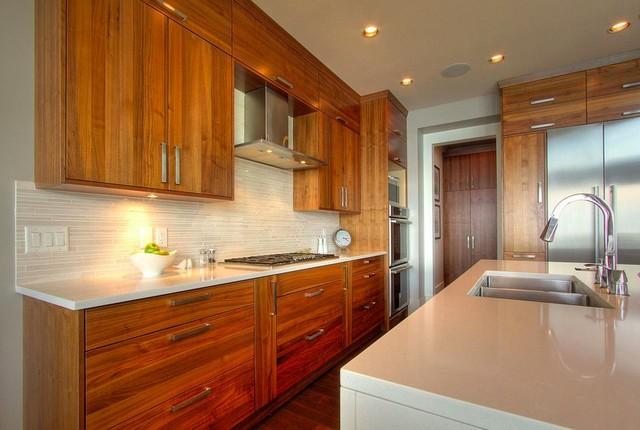 Syberg Designs modern-kitchen