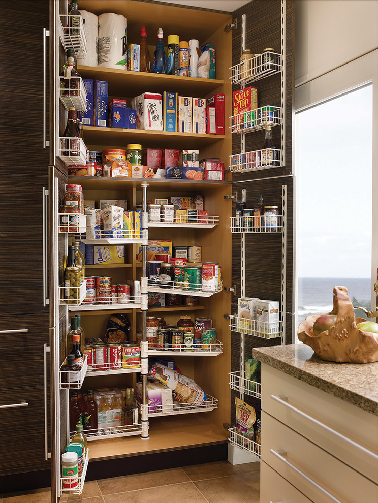 Kitchen pantry - contemporary kitchen pantry idea in Other with flat-panel cabinets and dark wood cabinets