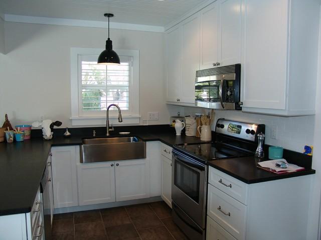 Tampa Renovation 03 traditional-kitchen