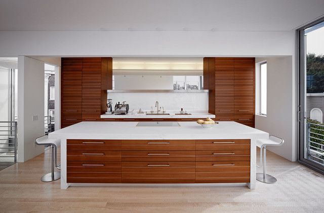Telegraph Hill Residence modern kitchen