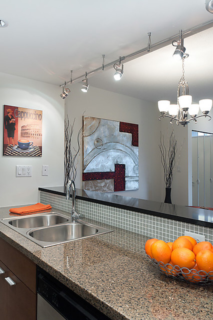 TH107-980 Cooperage Way, Vancouver contemporary-kitchen