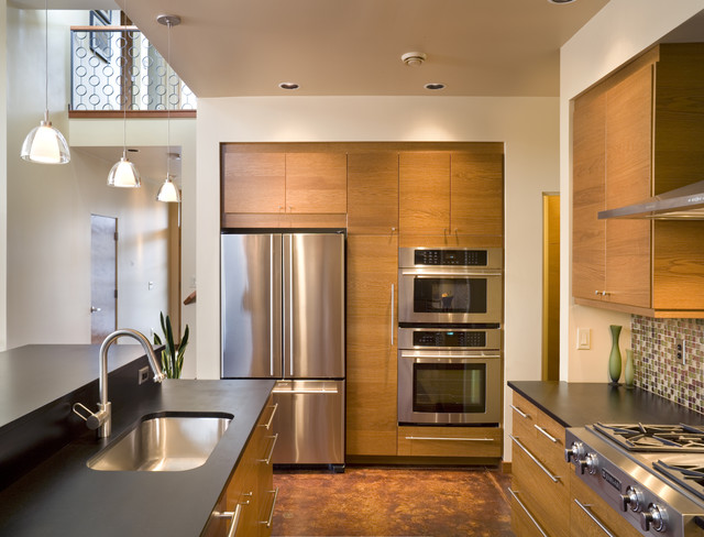 The Abbott contemporary-kitchen