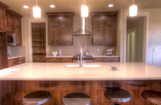 The Alder contemporary-kitchen