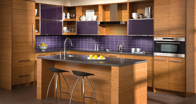 The beauty of bamboo contemporary kitchen charlotte for Bamboo wood kitchen cabinets