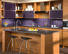 The Beauty of Bamboo contemporary-kitchen