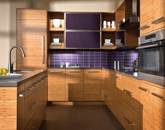 The Beauty of Bamboo contemporary kitchen