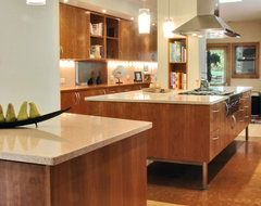 The Entertainer contemporary-kitchen