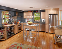 The Greenest Remodel in Ann Arbor contemporary-kitchen