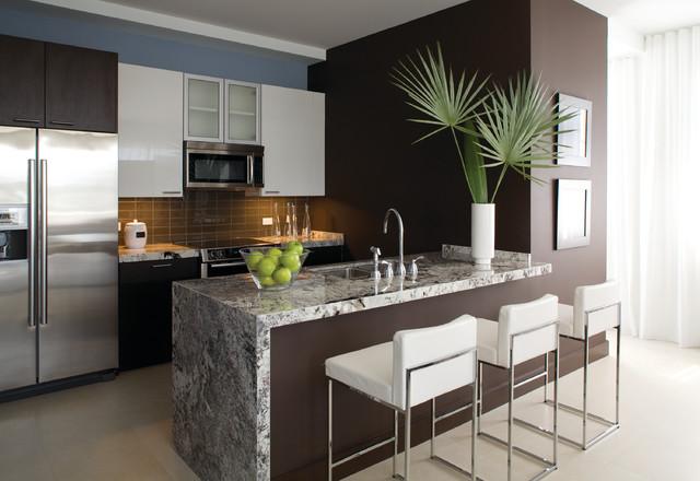 The Mark Downtown 3 - Delray Beach, FL Condo contemporary-kitchen