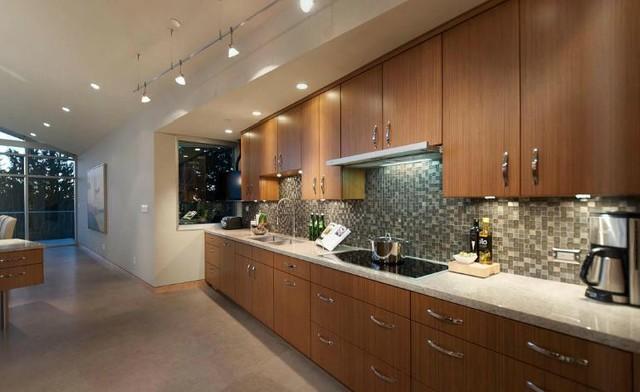 The Rockbank contemporary-kitchen