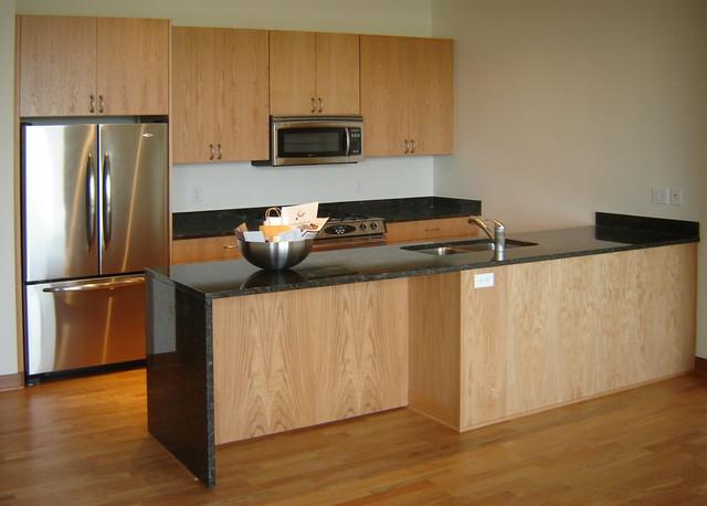 The Zenity Kitchens contemporary-kitchen