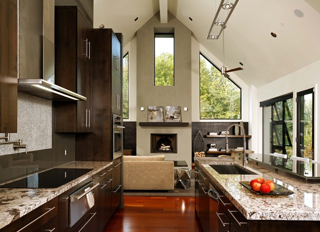 Through Kitchen to Living Room - Contemporary - Kitchen - dc metro - by KohlMark Architects and ...