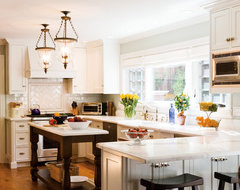 Tiburon home remodel traditional-kitchen