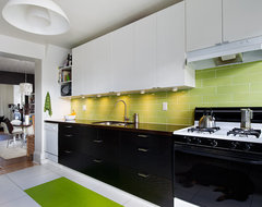 toronto kitchen contemporary-kitchen