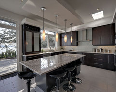 Tracey Lamoureux contemporary-kitchen