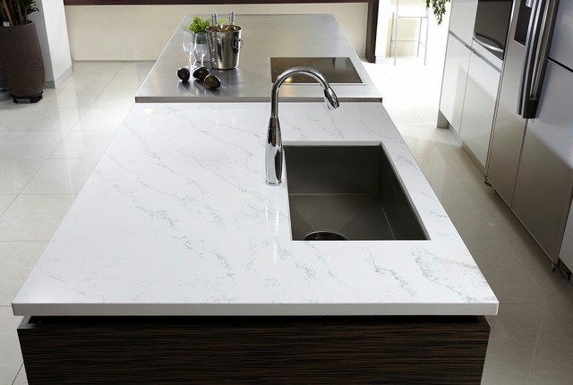 Genial Example Of A Large Minimalist Galley Porcelain Floor Eat In Kitchen Design  In Chicago With