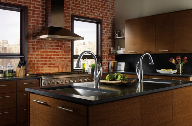 Transitional kitchen designs industrial kitchen for Kitchen designs by delta