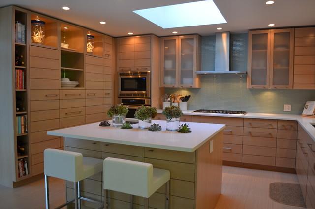 transitional kitchen contemporary-kitchen