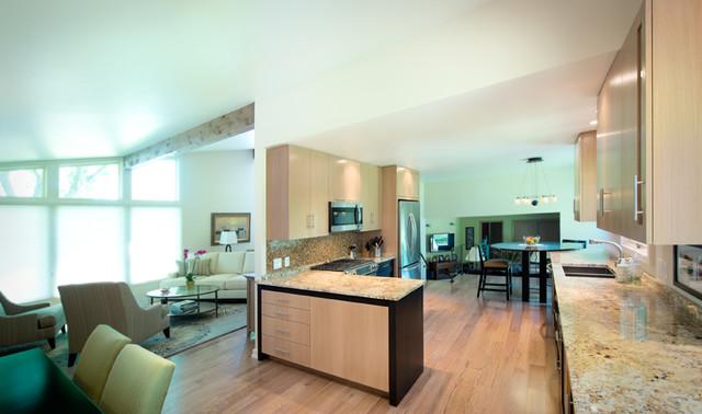 Tri-Level Kitchen contemporary-kitchen