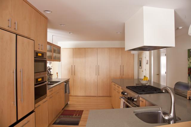 Tri-Level Transformed - Kitchen contemporary-kitchen