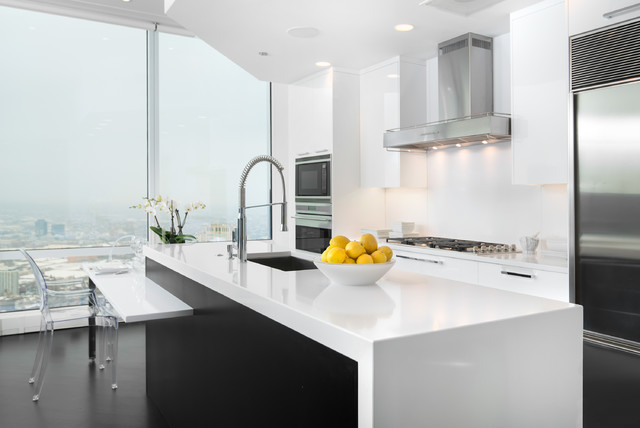 Trump Contemporary Kitchen Chicago By Dresner