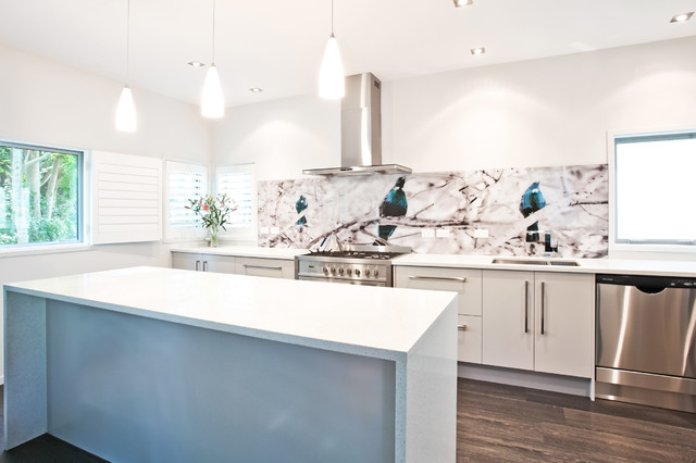 White Kitchen Splashback Ideas tui bird printed image on glass kitchen splashback - contemporary