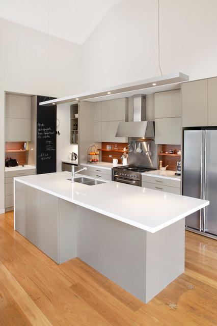 Turramurra Kitchen contemporary-kitchen