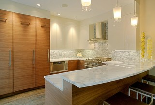 Union Park Unit 2 Kitchen contemporary kitchen