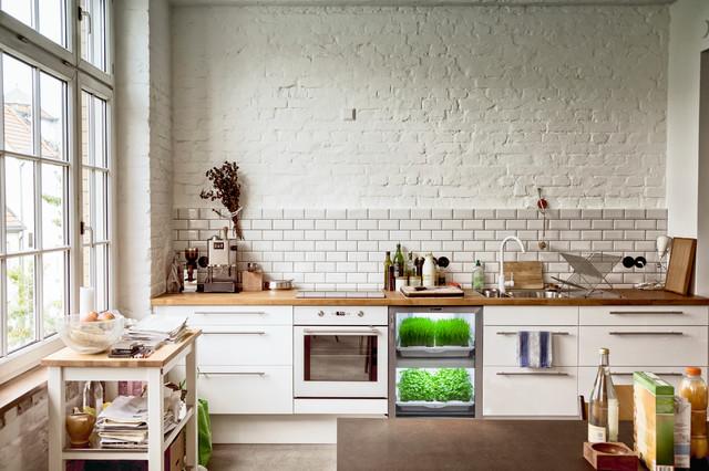 Urban Cultivator kitchen