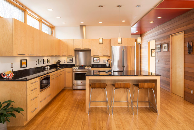 urban green modern kitchen minneapolis by sala architects. Black Bedroom Furniture Sets. Home Design Ideas