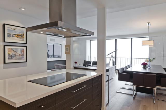 Urban Retreat Contemporary Kitchen Toronto By Biglarkinyan Design Planning Inc