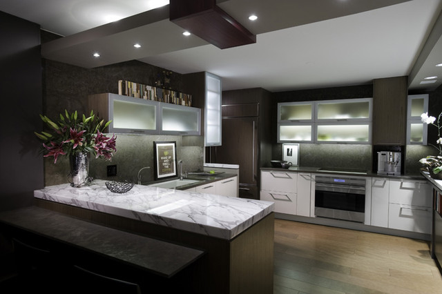 Urban Sleek Contemporary Kitchen Chicago By Fredman Design Group