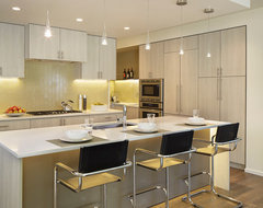 Value Driven Modern Home contemporary-kitchen