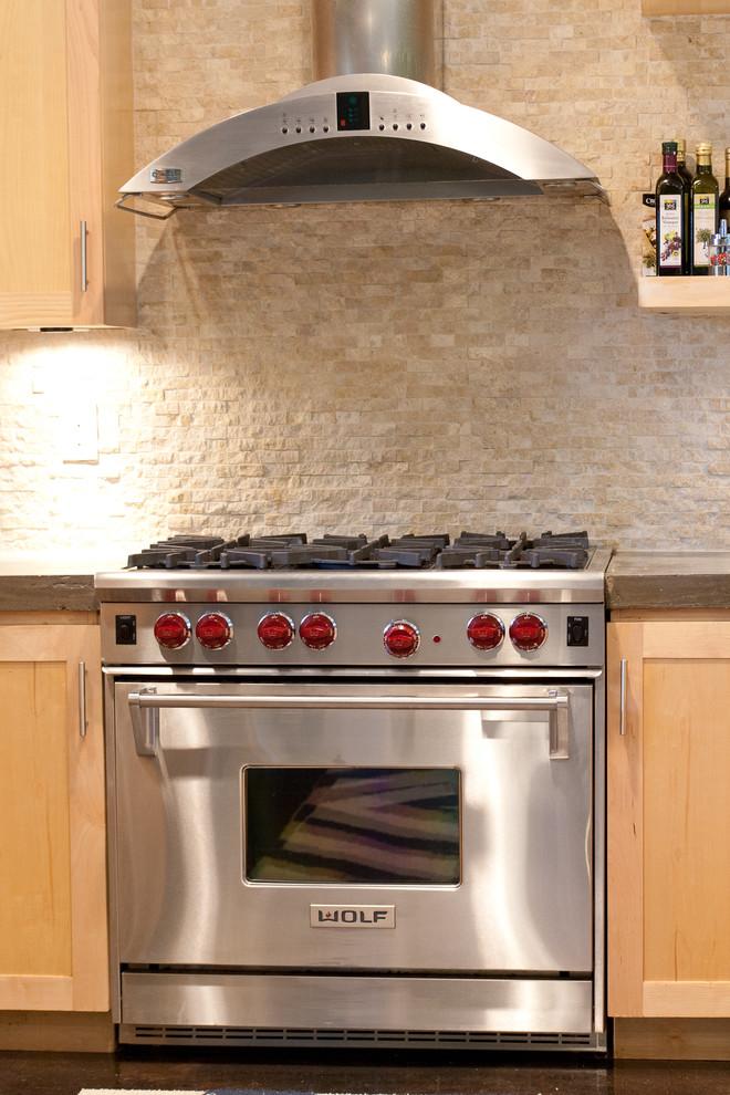Example of a minimalist kitchen design in Dallas