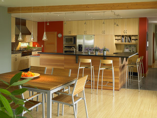 Vashon Residence kitchen contemporary-kitchen