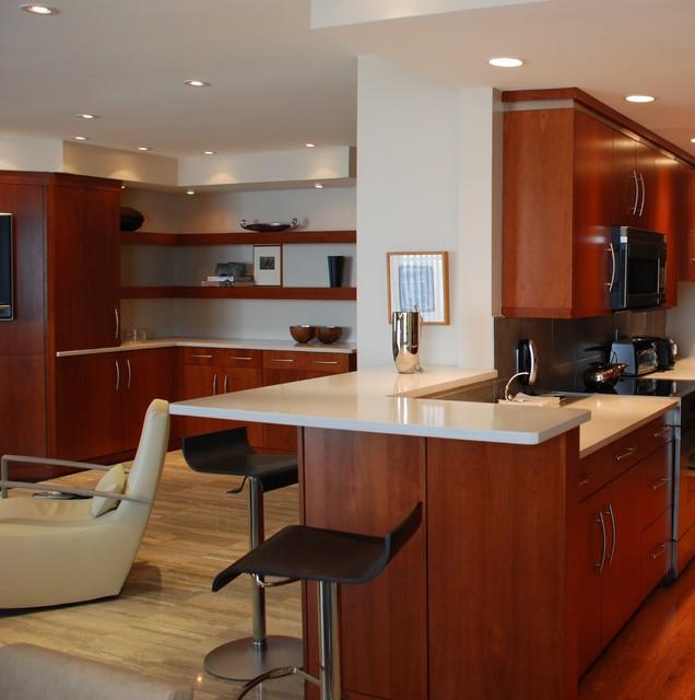 Ventnor New Jersey Condo contemporary-kitchen