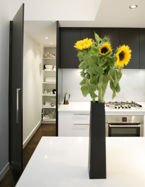 Walk in pantry kitchen contemporary kitchen sydney for Modern kitchen pantry