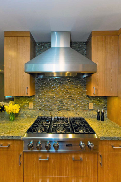 Walker Zanger Backsplash modern-kitchen