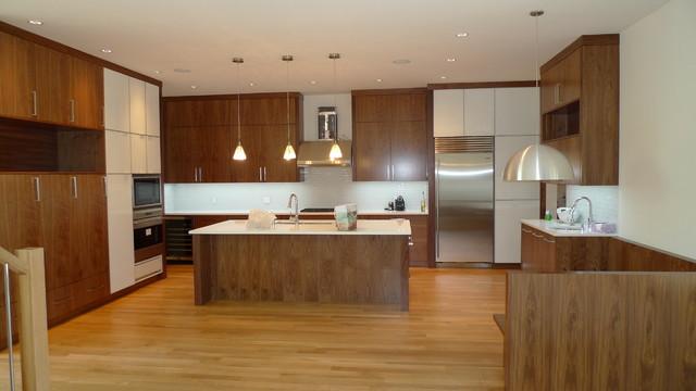 Wall/Glass Kitchen contemporary-kitchen